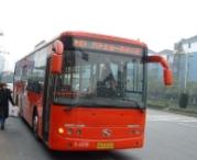 诸暨至滨江11月将添城际公交