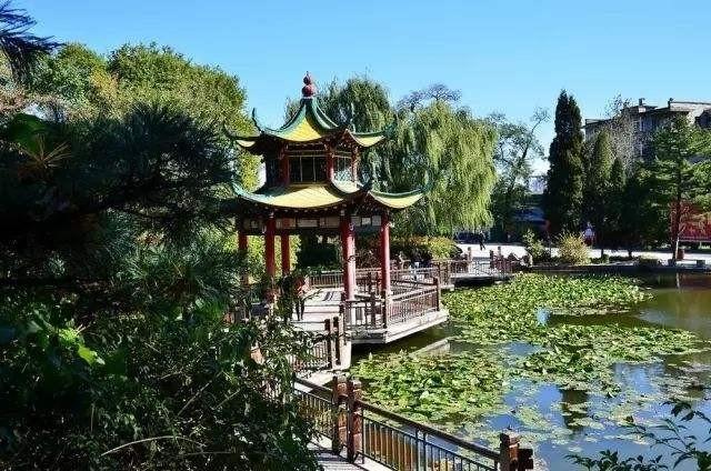 大关公园、方家埭公园提升改造 康桥新增20万方的浪漫花海