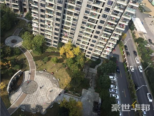 俯瞰中心花园
