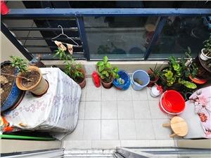 景冉佳园二手房-阳台