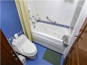 龙禧大酒店二手房-卫生间