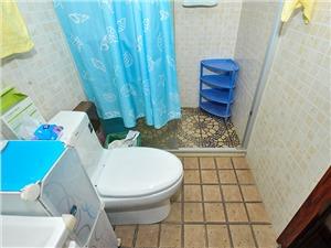 金帝海珀二手房-卫生间