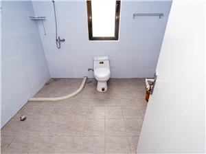 御道路一号二手房-卫生间