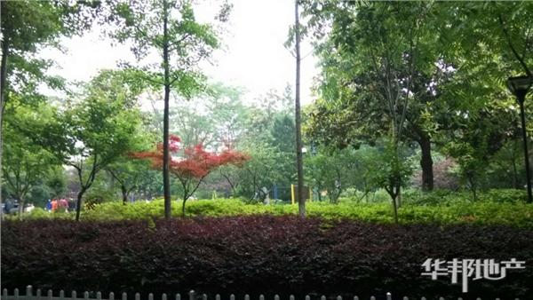 德胜公园2