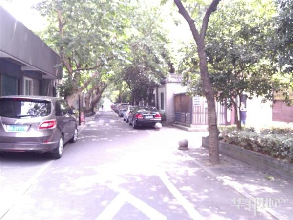 小区道路绿化
