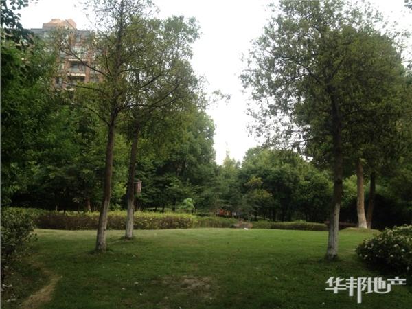 世纪新城公园
