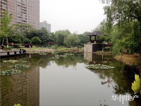 小区中心花园人工湖