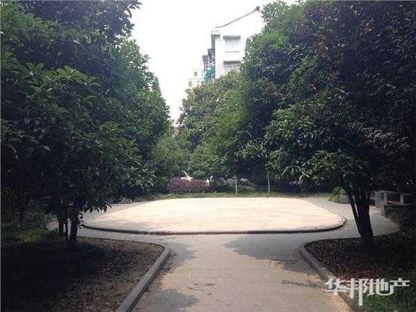 三区中心花园