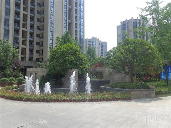 中心花园景观